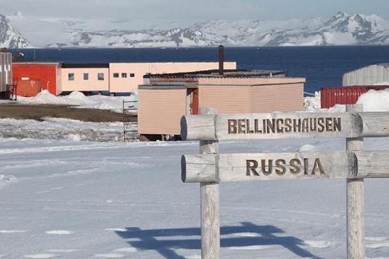 Antarktický vědec pobodal kolegu, který mu neustále prozrazoval konce knih